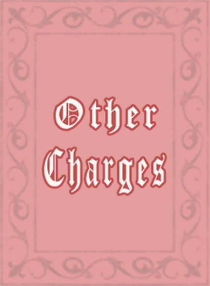 Other Charges