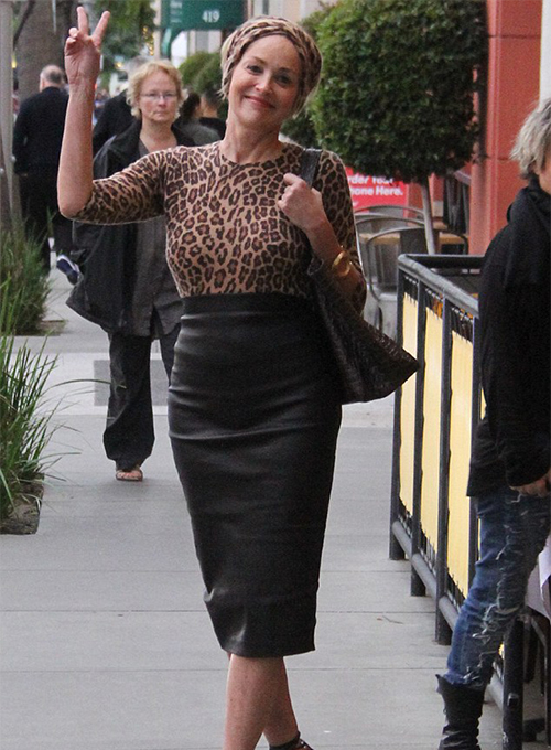 Sharon Stone Leather Skirt